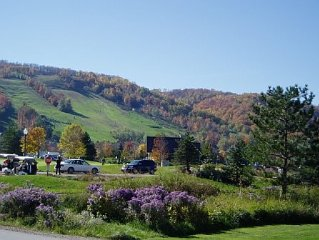 Beautiful Blue Mountain View, private setting on Monterra Golf Course and ravine