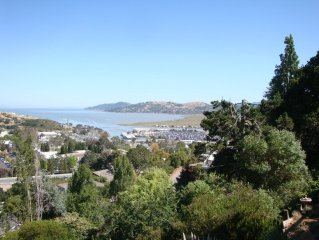 Bright modern one bedroom apartment with Stunning view over the bay