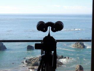 'Sea eScape' Oceanfront Condo in Brookings at Rainbow Rock