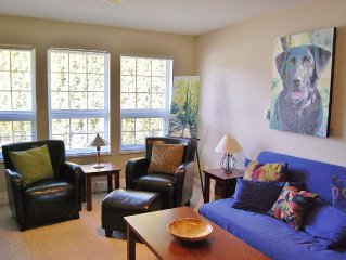 Whistler Ski 35 mins, snowshoe or relax. Pet friendly!