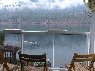 The McReavy Temple Vaseux Lakefront Home ( M T Nest )