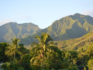 Convenience & Comfort, A minute walk to Hanalei bay and short stroll to town!