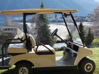 Golf Cart Included with Rental. Unobstructed Lake View, Wapato Point Resort!