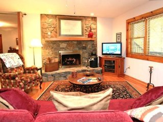 Cozy Log Cabin Apartment In East Asheville, Fireplace