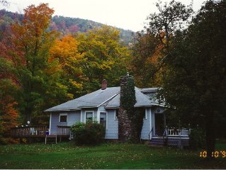 Quaint Country House on Stream With Mountain View.