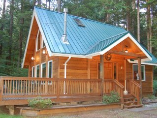 Cedar Cabin near Mt Baker. Hot tub,BBQ and large deck. WiFi Provided.