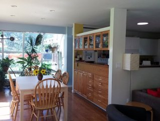 Spacious comfortable sunny house-private yard, game room-walk to CSU