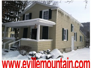 SKI HOUSE WALK TO DOWNTOWN ELLICOTTVILLE