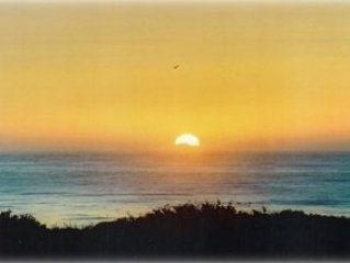 Outstanding Ocean View Updated Condo with Reasonable Rate