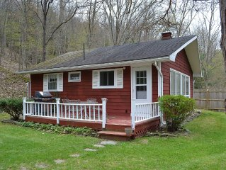 Nature Lovers Getaway Nestled In The Hills Of The Finger Lakes Region..