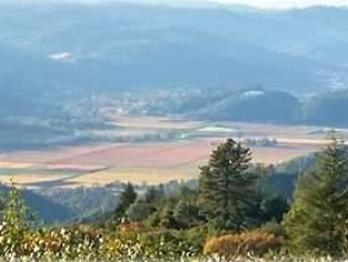 Soak in Lovely Sunsets & Views of the Napa Valley, holiday rental in Pope Valley