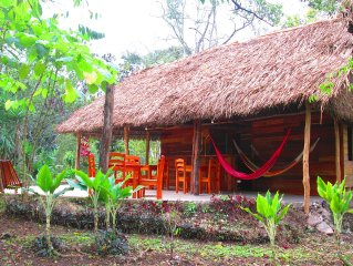 Eco Rainforest Lodge in Cayo on the Belize River, Cave Tubing, Ruins, Birding