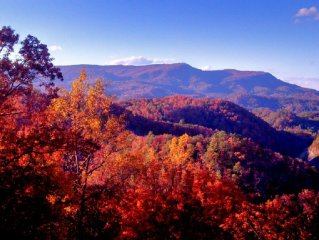 50 Mile Mountain Views! 5 Miles to Pigeon Forge! Secluded!