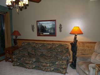 Nice 2 BR 2 BA Condo Free Wi-Fi  1 mile to Silver Dollar City!