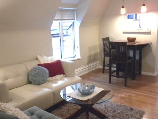 Beautiful Retreat, Uptown walk Downtown, Convention Center & tourist attractions