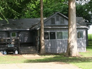 Waterfront Home on lake Dunlap and 2.5 acres of  beautiful 100' Cypress trees