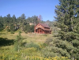 Peaceful cabin w/ pond and babbling creek off the beaten path w/ high speed net