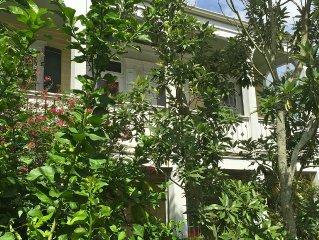 The Sanctuary; Hip, Historic Zimple House - Convenient - Uptown - Univers. Area