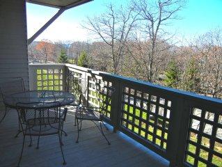 Newly Renovated 2Br 2Ba Wintergreen Resort Mountain Condo