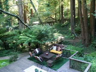 Nestled in the Redwoods, Easy Walk Downtown, Close to SF and Wine Country