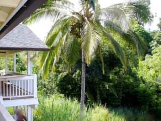 Bamboo View Suite 2bd 1bth At Bamboo Valley Inn