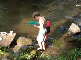 Come Enjoy Trout Fishing In The Rushing Creek