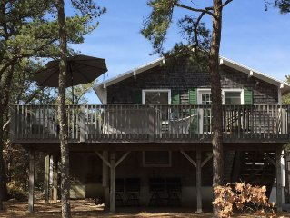 Nestled in the pines, steps to bay beaches, great deck, central AC