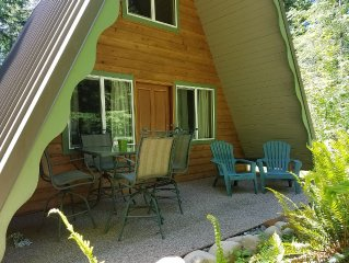 Quaint Remodeled A-Frame, mins from Mt. Rainier entrance, private lot