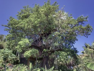 What Would You Dream, Sleeping In A Tree?  Utila's only treehouse!