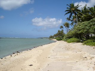 Mango Haven - A Gracious Beachfront Home