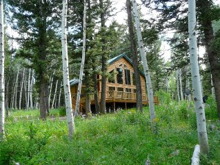 Secluded Cabin-in-the-Woods near Henry's Lake Close to Yellowstone Park!