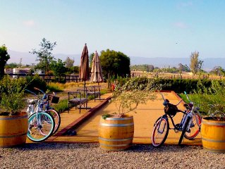 In the Heart of Los Olivos- Luxury Wine Country- on our Vineyard!