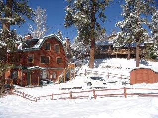 Lakeview Log Home 3 Story/2 Liv Rms w/ Deck  Ski & Mtn Retreat WiFi