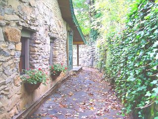 Asheville Stone and Log Cottage Near Downtown Hot Tub Quarter-Acre Fenced, Gated