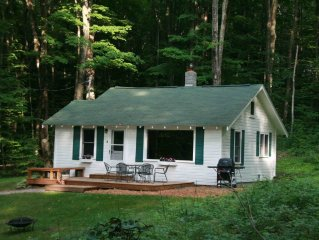 Up North Cabin with Big Glen Access and Lake view! June -August weeks available