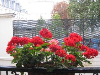 Ile Saint Louis-Luxury 2BR/2BA, Best Central Paris Location