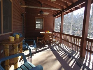Secluded Cabin near Brevard & DuPont State Forest