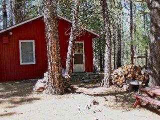 Rustic Cabin-'Squirrelville'