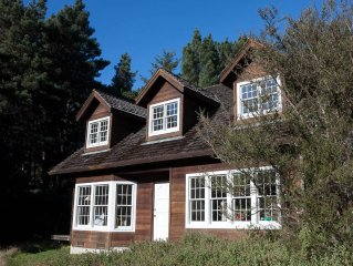 Cozy House In Large Private Meadow In The Woods; Minutes From Coastal Sand Dunes