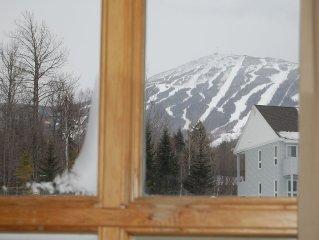 Ski-In/Ski-Out Snowbrook 2 BR 2 BA Condo
