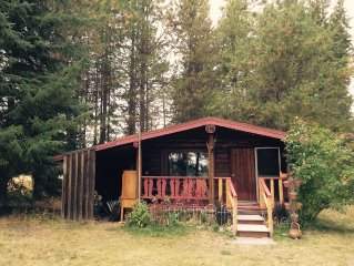 Cabin in among pines, comfort in rustic cabin with modern amenities.