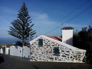 Casa da Araucaria (Nordeste)
