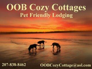 Dog Friendly - Walk to beach, pier ❤️ As of 3/9, avail 7/9-7/16, 7/23-30, 8/6-13