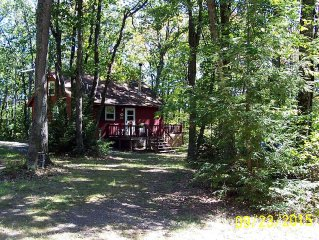 Updated Cabin At Tioga State Forest. Pet Friendly, Horses Welcome, Great Trails!