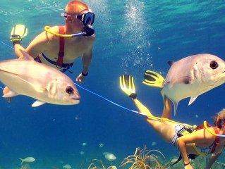 Caribbean Gem, Restaurants, Swim up Bar