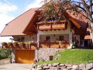 Ferienwohnung  36 m² - Rufenbauernhof