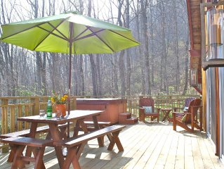 Hip Little Cabin on the Hill with Hot Tub & Wi-Fi/ Fantastic Location