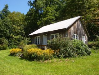 Soaring Mountain Cabin - Peaceful Setting On State Stocked Trout Stream