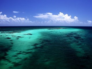 Caribbean Cove/beautiful waterfront view