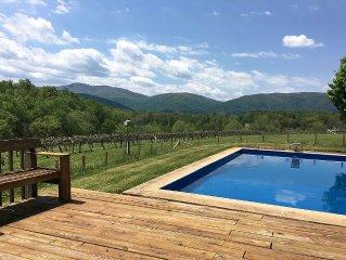 Farm House on Working Vineyard Near Blue Ridge Mountains, Charlottesville